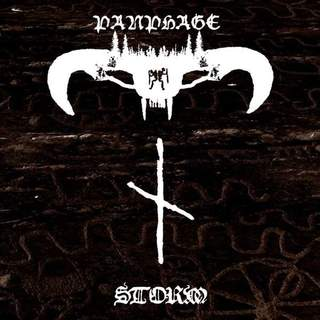 PANPHAGE - Storm, DigiCD